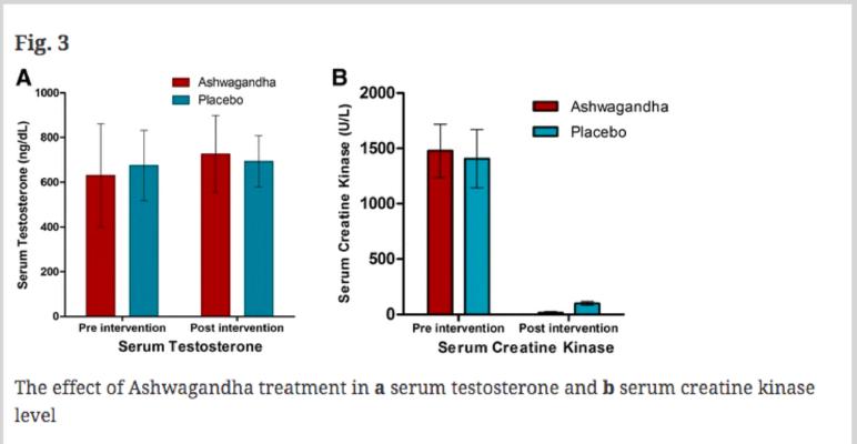 Sâm Ấn Độ làm tăng nồng độ hormone testosterone