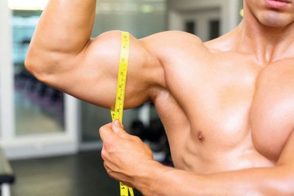 Công dụng sâm Ấn Độ giúp tăng cường cơ bắp